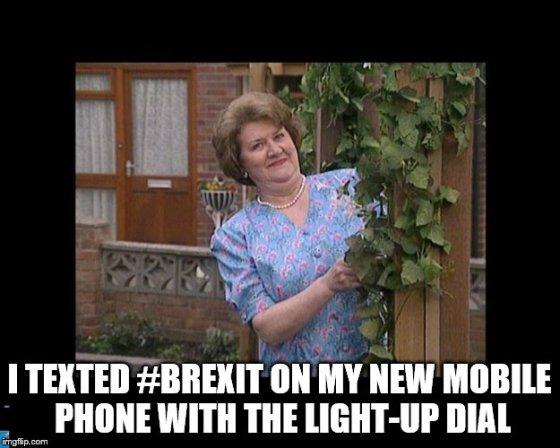 brexit girl