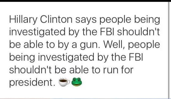 fbi gun
