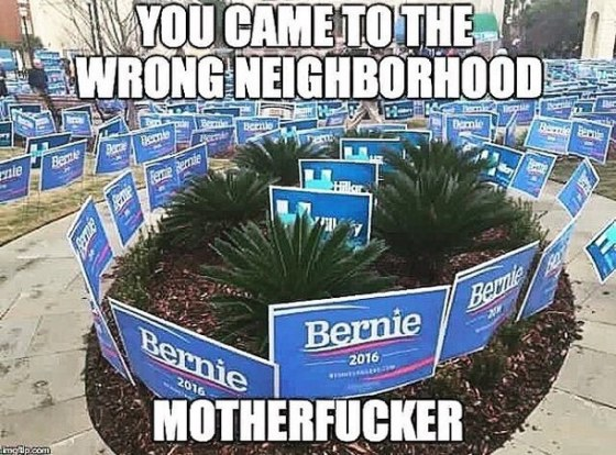 sanders hillary signs