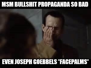 Joseph Goebbels facepalm