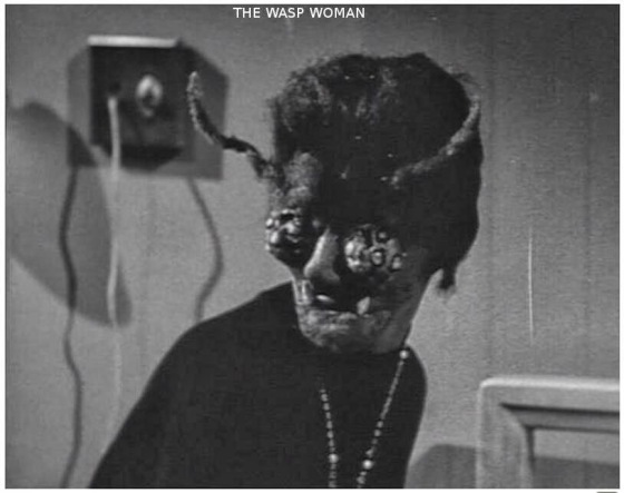 the-wasp-woman